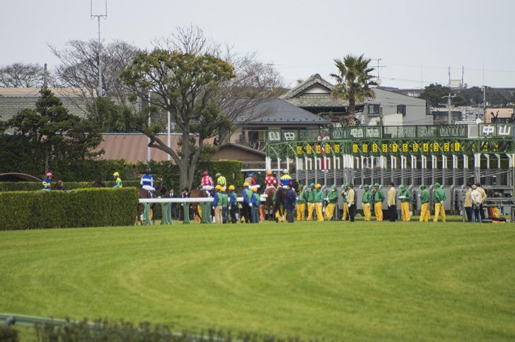 競馬のスターティングゲート